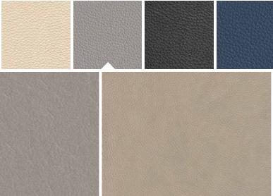 Rolf Benz VIDA Leather sample